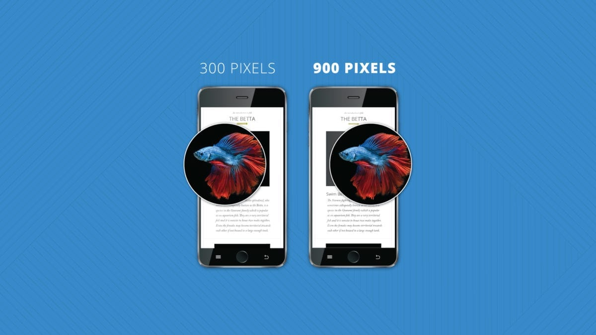 Fluid Retina Images for Email