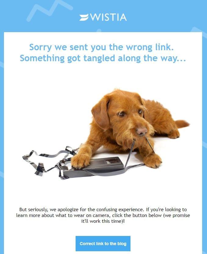 Wistia apology email example